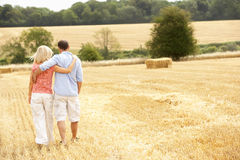 Couple Walking Together Through Summer Harvested F Royalty Free Stock Photo
