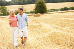Couple Walking Together Through Summer Harvested F Stock Photos