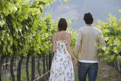 Couple Walking In Vineyard Royalty Free Stock Photo