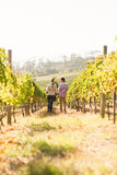 Couple walking through vineyard Royalty Free Stock Photography