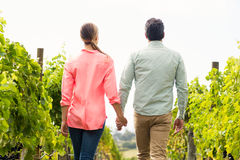 Couple walking through vineyard Stock Photo