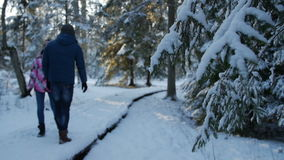 Couple walking in the winter forest. Shallow depth of field stock video