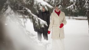 Couple walking in a winter park stock video