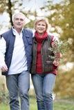 Couple walking through woodlands Stock Photos