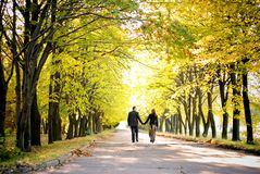 Couple walks down the park alley. Couple walks away down the park alley stock image