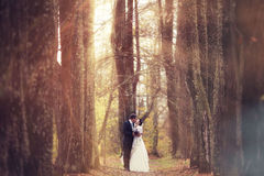 Couple walks in magical forest Stock Photos