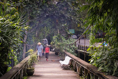 A Couple Walks Over a Wooden Bridge In Ubud, Bali Royalty Free Stock Photography