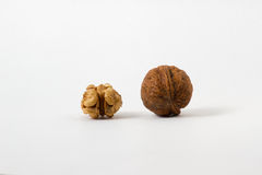 Couple of walnuts in their skins and peeled. Isolate white background royalty free stock images
