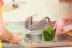 Couple washing fresh vegetables in kitchen Stock Images