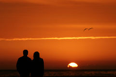Couple watching sunset. A silhouetted couple watches the sun setting over the ocean with an orange sky and two birds.  Could either evoke a romantic scene or Royalty Free Stock Photos