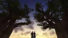 Couple watching sunset between trees, timelapse clouds, day to night stock video footage
