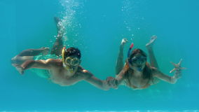 Couple wearing snorkels holding starfish underwater stock footage