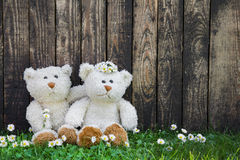 Couple: Wedding greeting card with two teddy bears on wooden bac Stock Images