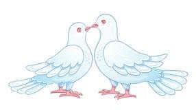 Couple of white doves kissing Royalty Free Stock Photos