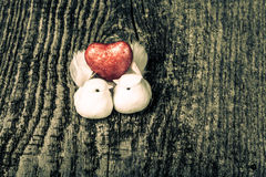 Couple of white pigeons with shiny red heart on old wooden backg Stock Photography