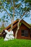 Couple of white rabbit in garden Stock Images