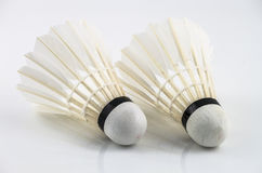 Couple white shuttlecock Stock Images