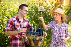 Couple winegrower tasting wine. Young couple winegrower tasting wine in vineyard Stock Photography