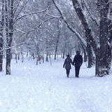 Couple in winter forest Royalty Free Stock Photo