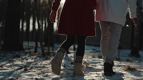 Couple in the winter woods on a walk with dog. Couple in the winter woods on a walk with the dog stock footage