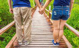 Couple on wooden walkway in abundant mangrove forest Stock Photos