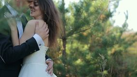 The couple in the woods bride and groom on edge of pine forest on the wedding day. Slow motion stock video