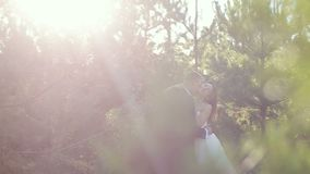 The couple in the woods bride and groom on edge of pine forest on the wedding day. Slow motion stock footage