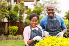 Couple working garden Royalty Free Stock Photography