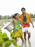 Couple working in a paddy field Stock Photos