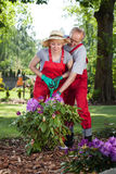 Couple working together in the garden Royalty Free Stock Photos