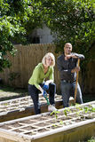 Couple working on vegetable garden in backyard Stock Image