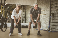 Couple workout in gym. Senior people lift weight. Senior couple workout in gym. Senior people lift weight Royalty Free Stock Photography