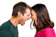Couple yelling while standing head to head Royalty Free Stock Photography