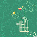 Couple of yellow birds, open cage and flourishes on green backgr Stock Photography
