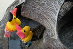 The couple yellow hornbills. Animals pottery. stock images