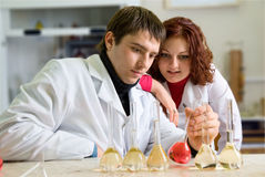Couple of young scientists Royalty Free Stock Photo
