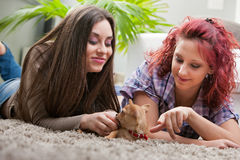 Couple of young women playing with a small dog Stock Image