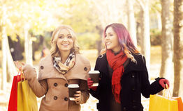 Couple of young women with shopping bags in the park Royalty Free Stock Photo