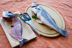 Coupled of gilthead already filleted and whole sea bass on woode. N bases Royalty Free Stock Images