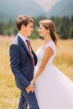 Couples à la mode et heureux de mariage sur le champ ensoleillé avec le fond de forêt Photo libre de droits