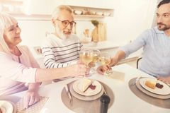 Couples âgés gais et sa célébration de famille d'enjoyign de fils Images stock