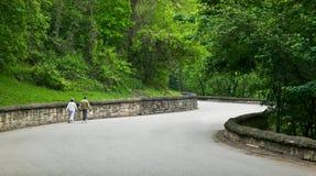 Couples âgés moyens descendant la route rurale Photographie stock