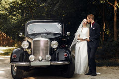 Couples élégants de luxe de mariage tenant des mains sur le fond de l'étable Image libre de droits