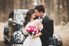 Couples élégants de mariage, jeune mariée, marié embrassant et étreignant sur la rétro voiture Photographie stock libre de droits
