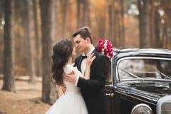 Couples élégants de mariage, jeune mariée, marié embrassant et étreignant sur la rétro voiture Images libres de droits