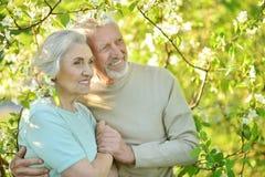 couples étreignant l'aîné Image libre de droits