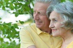 Couples aînés affectueux Image libre de droits
