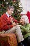 Couples aînés affectueux parlant par l'arbre de Noël Photographie stock libre de droits
