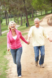 Couples aînés appréciant la promenade en stationnement Image stock