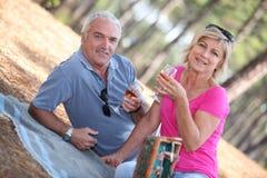 Couples aînés appréciant le pique-nique romantique Images libres de droits